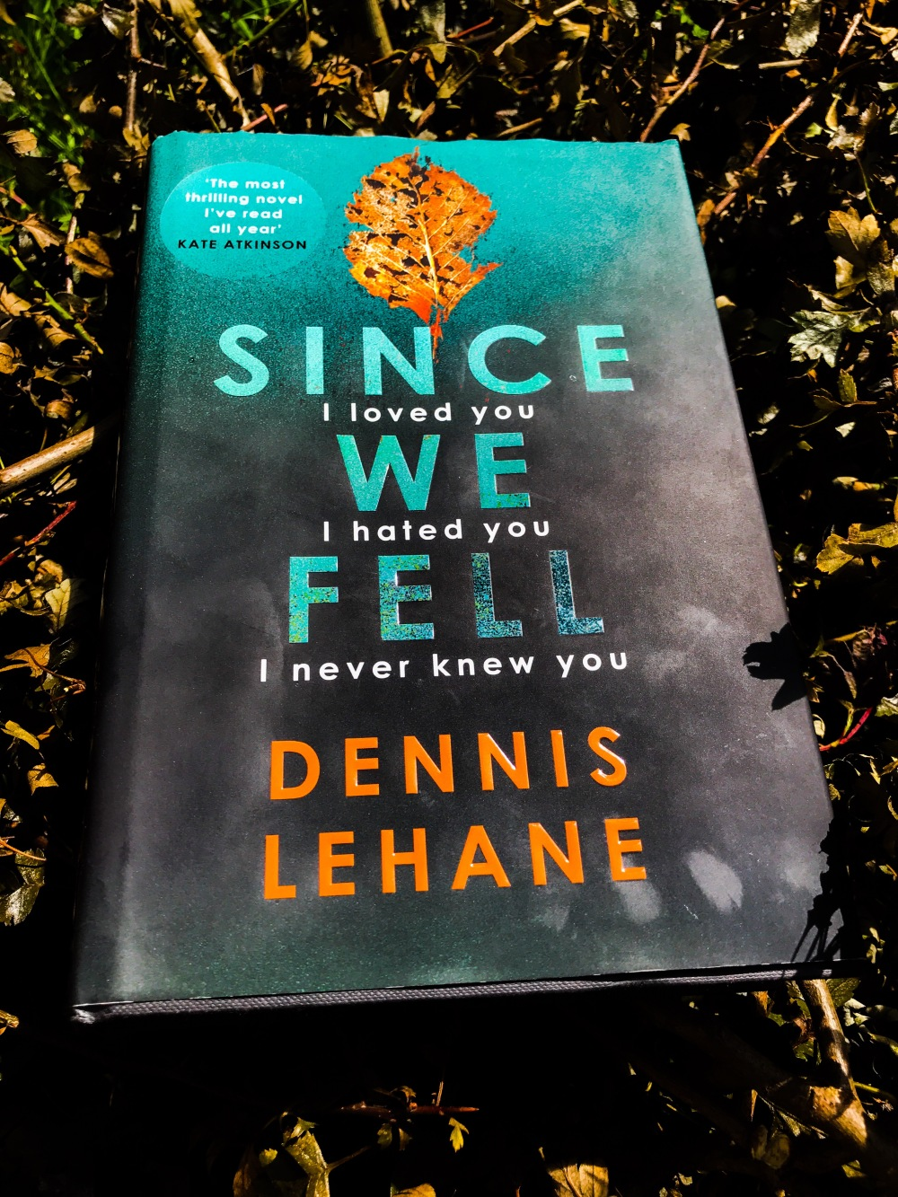 Since We Fell by Dennis Lehane - book review by Dave Lancaster for Hits the Fan